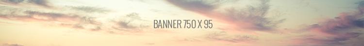 750x95a